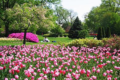 Sherwood-Gardens